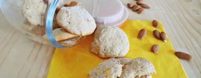 biscotti-mela-cannella